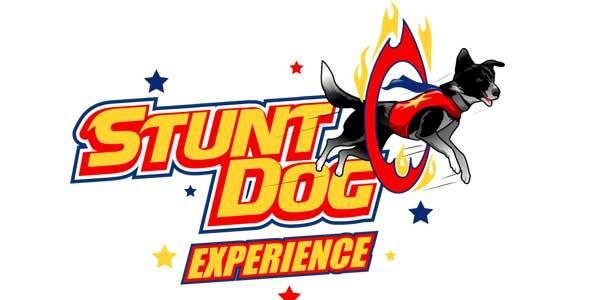 stuntdogthumb